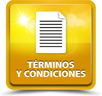 Terms and conditions ES 01